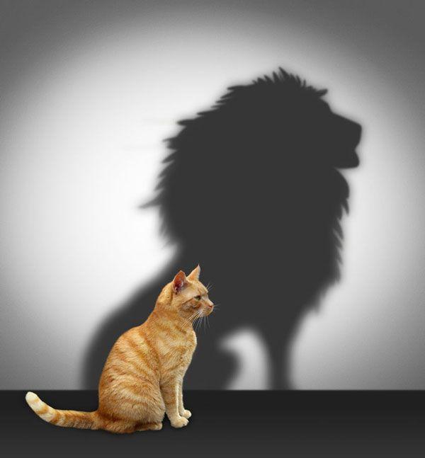 como superar los complejos psicólogo de vitoria