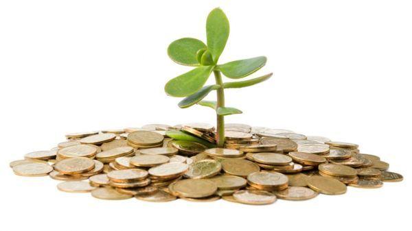 como-llevarte-bien-con-el-dinero-psicologos-vitoria